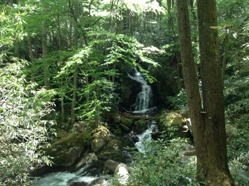 Mouse Creek Falls, GSMNP, 5/2015